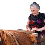 Otilia Araya Varela: Guardiana de una tradición